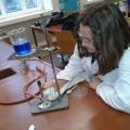 biologiewpf1